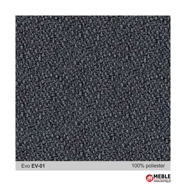 Evo-EV01